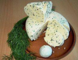 Миниатюра к статье Домашний сыр