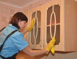 Миниатюра к статье Как избавиться от жирных пятен в кухне