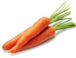 Миниатюра к статье Необычный способ посадки моркови!