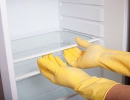 Миниатюра к статье Как и чем мыть холодильник