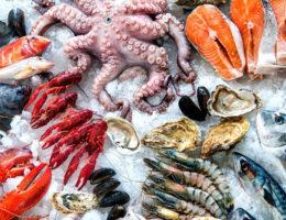 Как выбрать морепродукты, которые можно есть без риска для здоровья